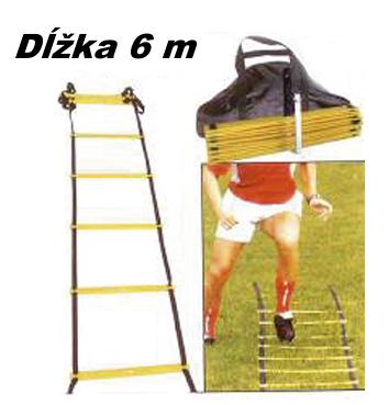 Koordinačný rebrík Spartan